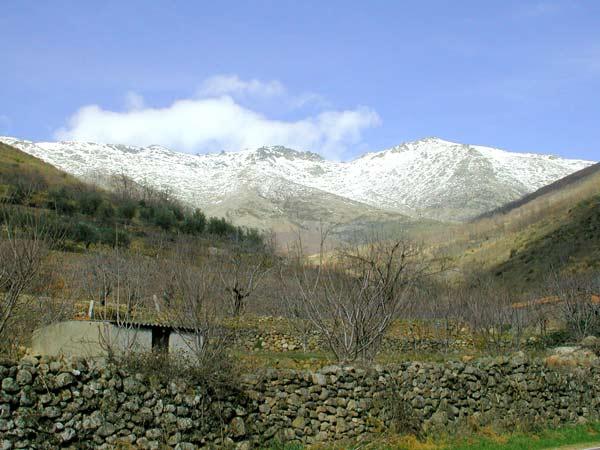 Valle del jerte nevado for Oficina de turismo valle del jerte